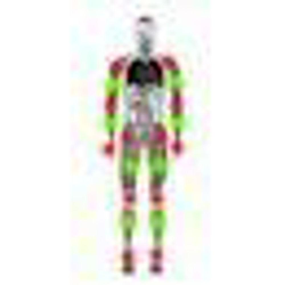 Slika za kategorijo Kosti, sklepi in mišice
