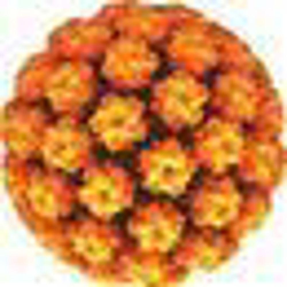 Slika za kategorijo DNK test za humani papiloma virus (HPV)
