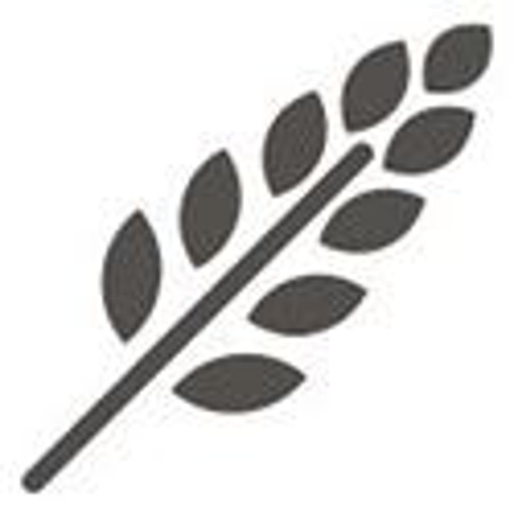 Slika za kategorijo Holesterol