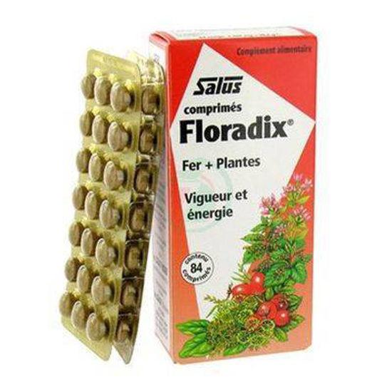 Floradix, 84 tablet