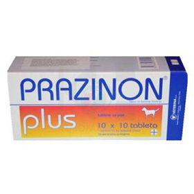 Slika Prazinon plus proti črevesnim zajedalcem, 10 x 10 tablet