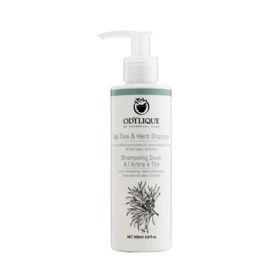 Slika Odylique blagi zeliščni šampon s čajevo mirto, 200 mL