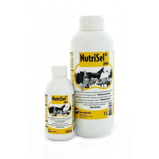 Nutrisel Plus aminokislinsko vitaminski dodatek za vse vrste živali, 1000 mL