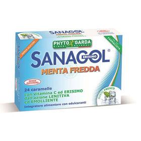 Slika Sanagol Ledena meta, 24 pastil