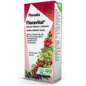 Slika Floradix floravital, 250 mL