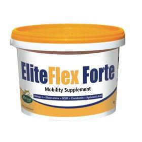 Slika EliteFlex Forte prašek za konje, 2 kg