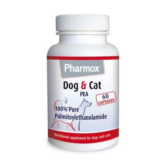 Pharmox PEA (palmitoiletanolamid) za pse in mačke, 60 kapsul