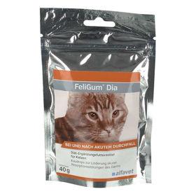 Slika Feligum Dia žvečljive tablete za mačke, 20 tablet