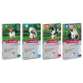 Slika Advantix ampule/kožni nanos za pse - različne velikosti, 4 ampule