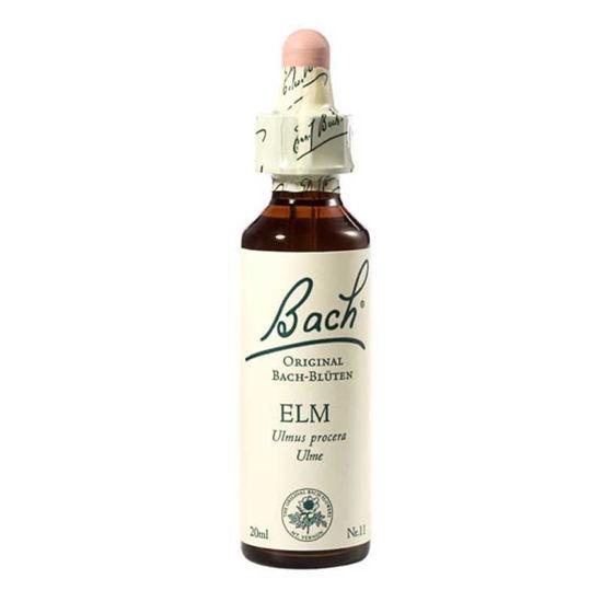 Bach Elm brest bachove kapljice, 20 mL
