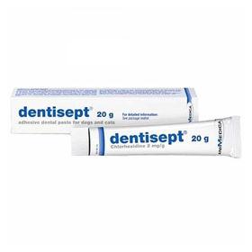 Slika Dentisept pasta za dlesni mačk in psov, 20 g
