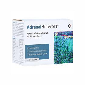 Slika Adrenal-Intercell, 120 kapsul