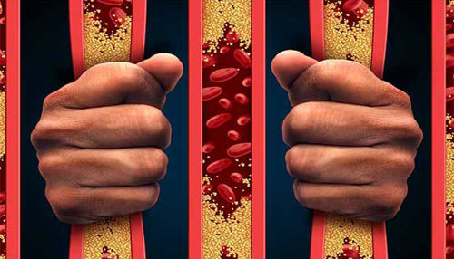 Naravni statini - zdravilo prihodnosti!