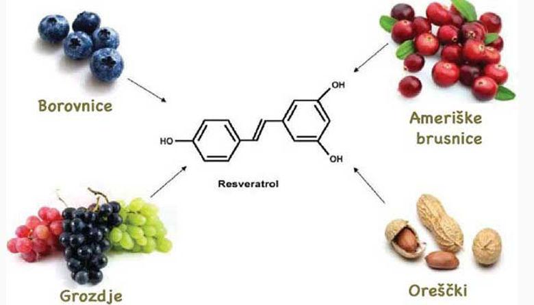 Picture of Ste tudi vi že med navdušenimi uporabniki Resveratrola?