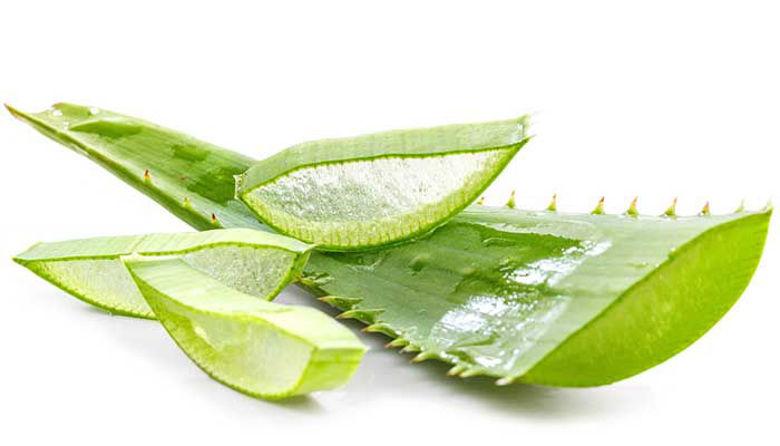 Picture of Fruit of the Earth aloe vera kozmetika praznuje 20 let!