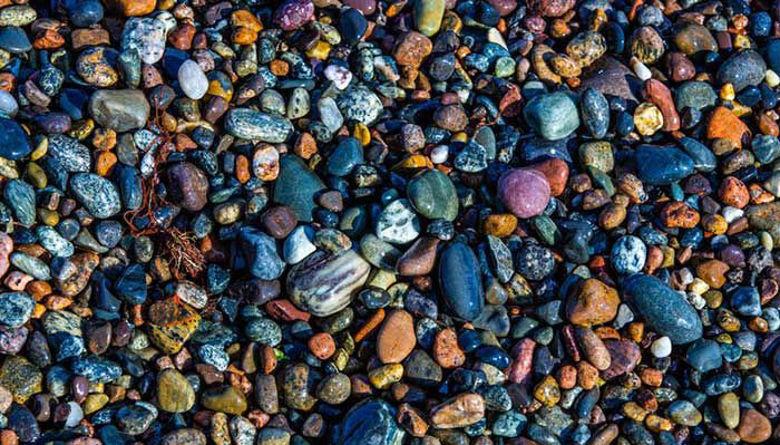 Picture of Selen in cink - esencialna minerala!