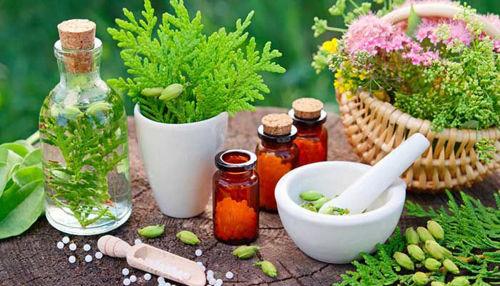 Homeopatija za brezskrbne poletne dni!