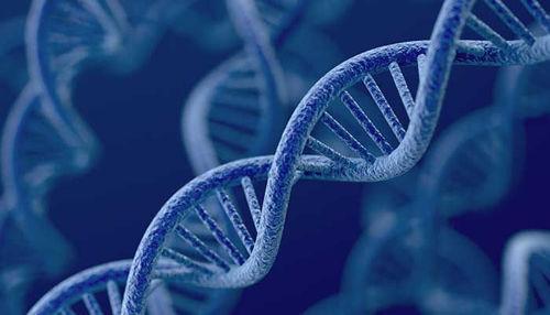 Poiščite odgovor v vaših genih