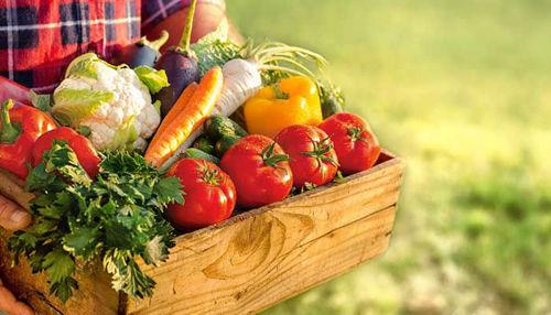 Konvencionalna hrana v primerjavi z organsko hrano - je ekološko res bolje?