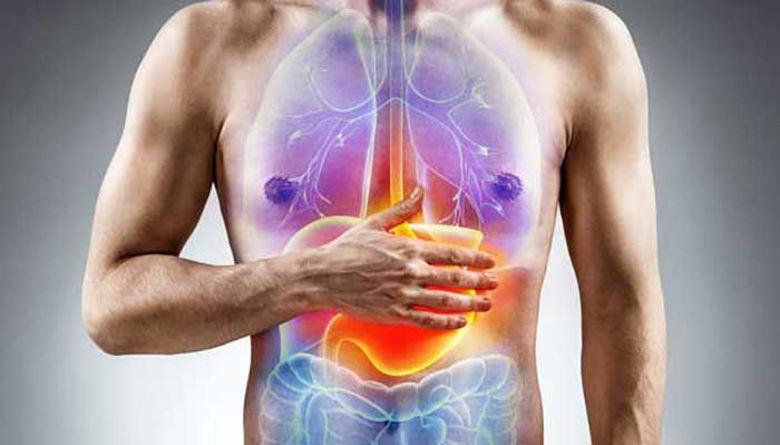 Picture of Mali vodič za zdrav želodec