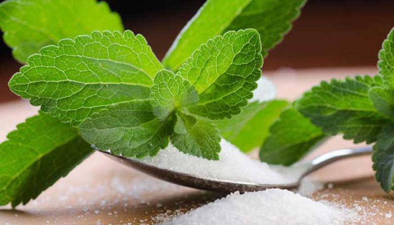 Picture of Stevia sladilo brez kalorij