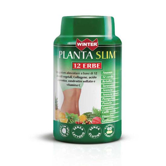 Winter Planta Slim 12 zelišč, 60 kapsul