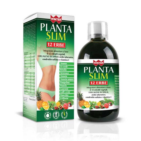 Winter Planta Slim 12 zelišč tekočina, 500 mL